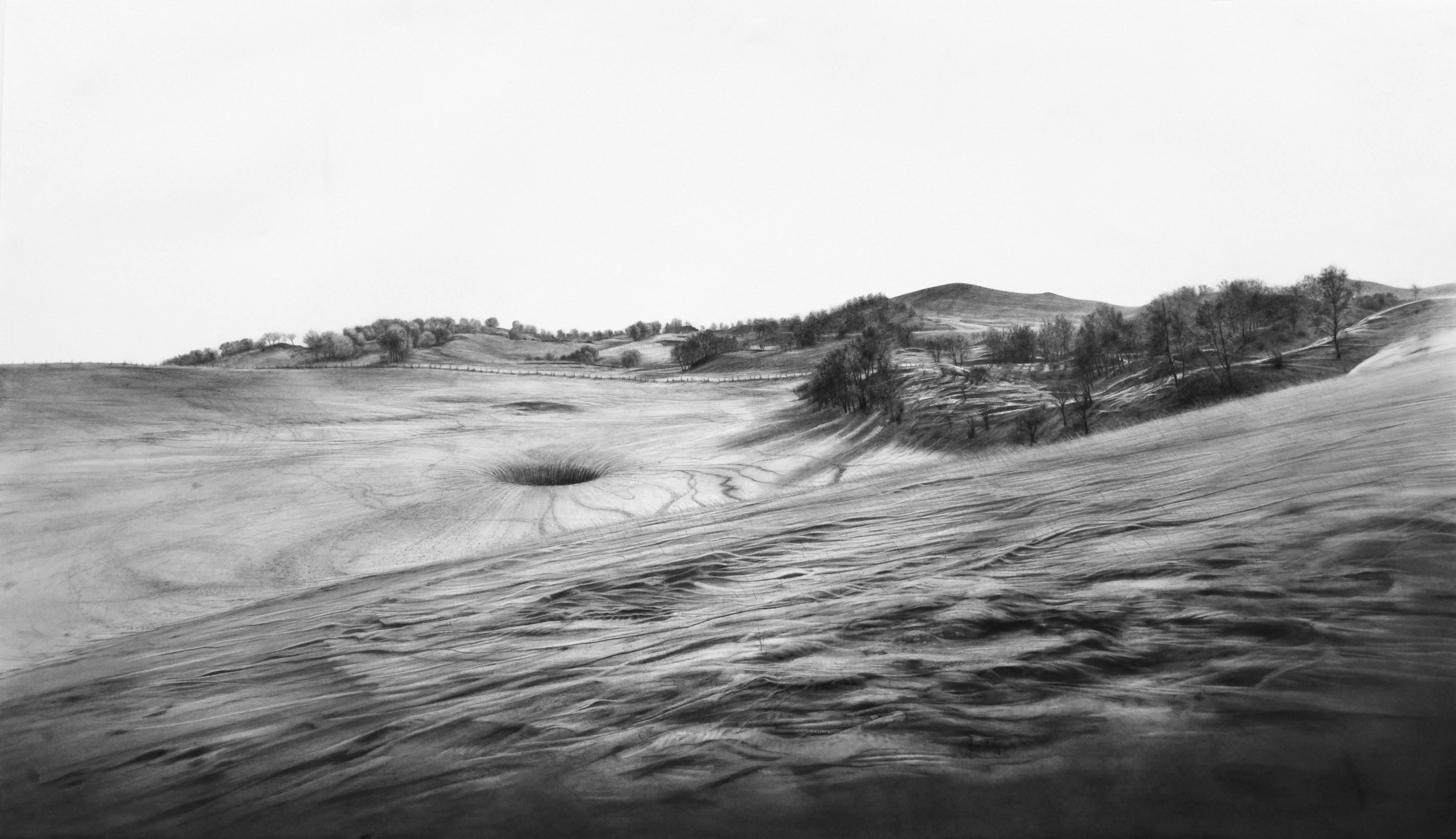 Douglas McDougall: Vascular Landscape