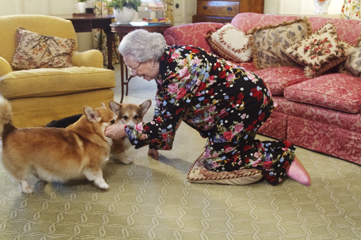Alison Jackson: Queen On The Floor With Corgis